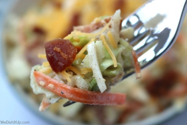 creamy coleslaw on a fork