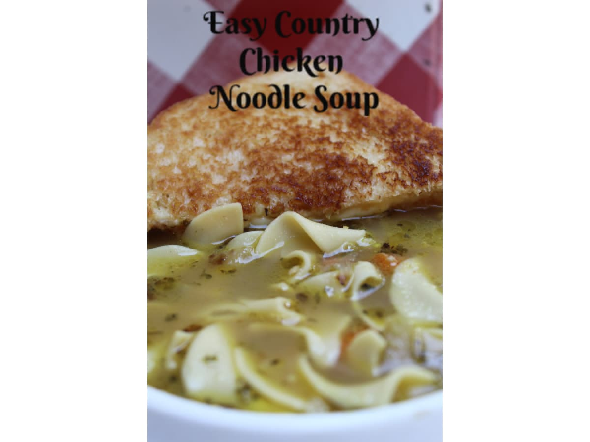 country chicken noodle