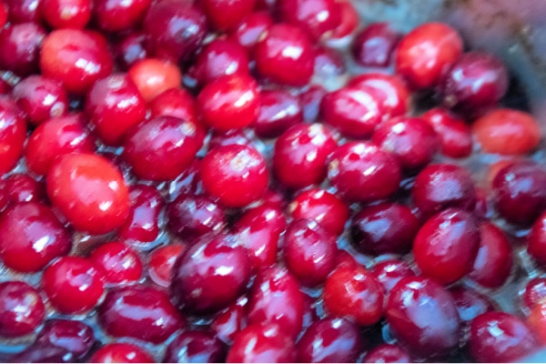 Cranberries Cookies